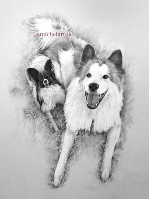 Zwei Hunde - 2019, 30 x 40 cm, Bleistift/Buntstift auf Karton