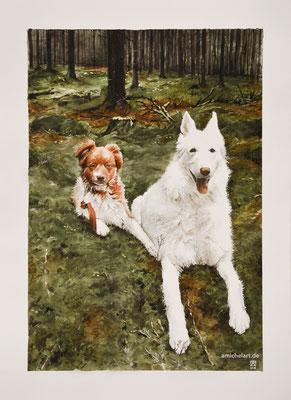 Leo & Laska - 2017, 30 x 40 cm, Aquarell auf Papier