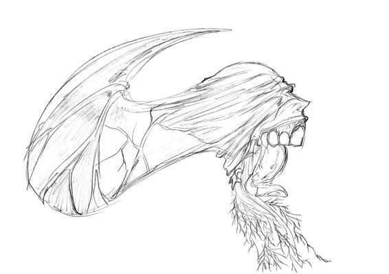 2013.2 画材:鉛筆 怒りの投影。