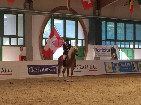 Haflinger Europameisterschaft Milano 2015 - Silber im CC