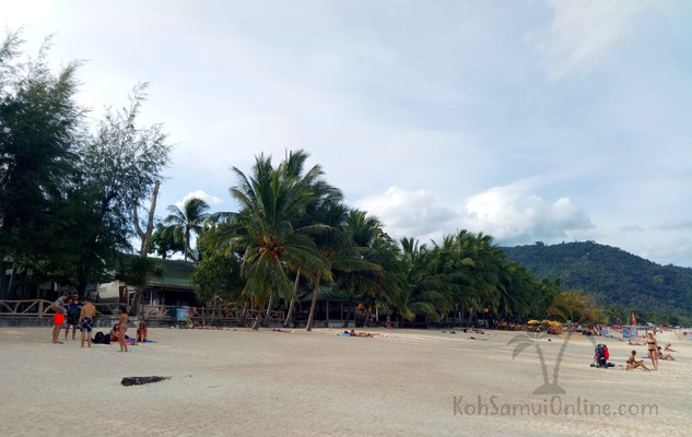 hotels in lamai Lamai Inn99
