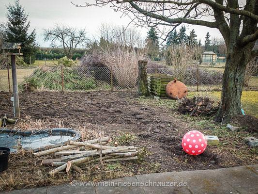 Der richtige Ort für ein Gartenreptil.