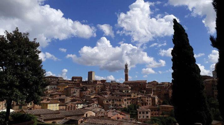 Tour  4 Bild 15 Siena