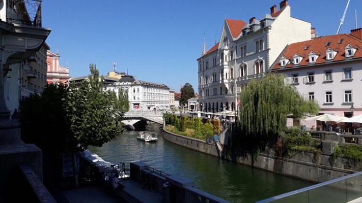 Tour 3 Bild 9 Bootsfahrt auf der Ljubljanica