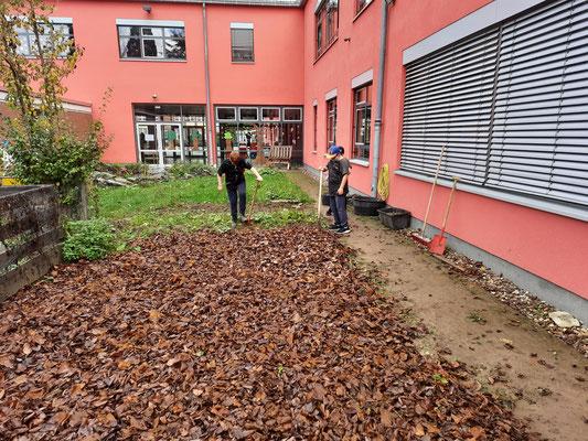 Eifrig zusammengesuchte Blätter werden sinnvoll zum Mulchen aufgebracht.