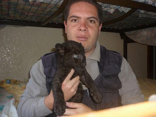 Rodrigo Gallardo
