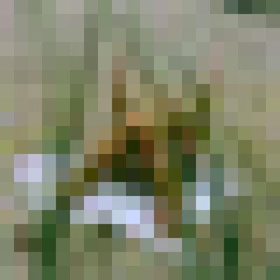 2009 - Pixels