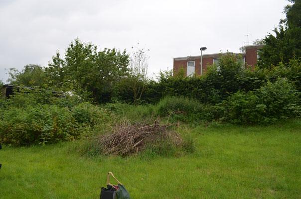 Baugrundstück, Grundstück, Solingen, Solingen Wald, Rasenfläche