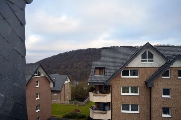 Immobilie in Ennepetal, Maisonettewohnung, Eigentumswohnung, Ausblick vom Wohnraum