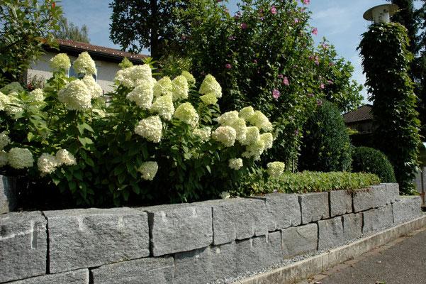 Tessiner Kleinmauersteine