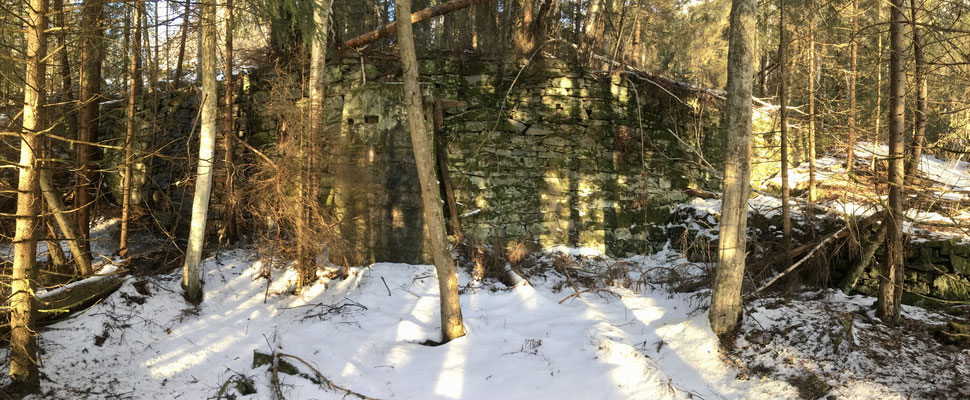 støttemyrer i skogen etter Tinnsjø koppermine