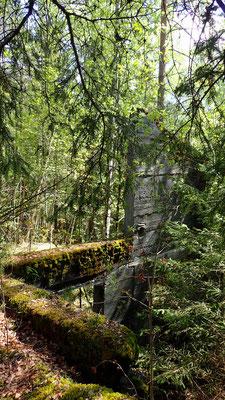 murrester etter Tinnsjø Kobbermine