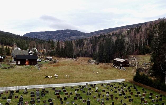 utsikt mot Tessungdalen fra Austbygde kirketårnet