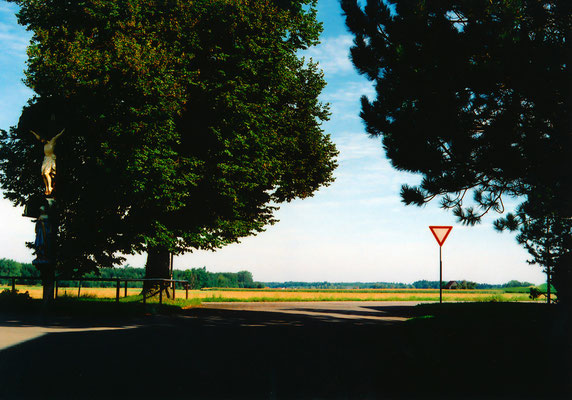 田園の巨木(before、2007年夏に撮影。「巨木とキリスト像」)