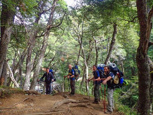 Die ersten Kilometer geht es ohne größere Steigungen durch einen schönen Lenga-Wald.