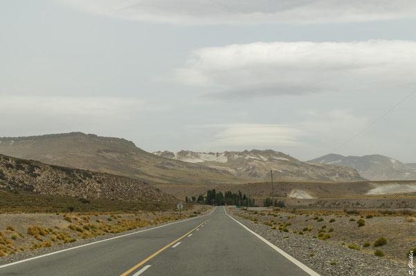 Unterwegs auf der RP 145 in Mendoza.