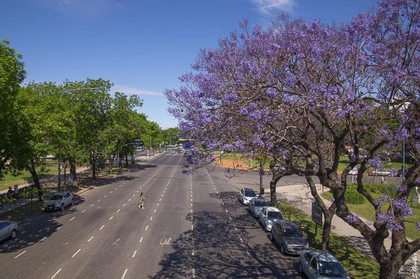 Stadtteil Recoleta in Buenos Aires