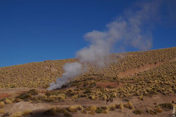 Geysire El Tatio, Atacama Wüste