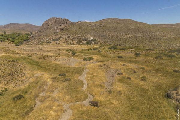 unterwegs mit dem Patagonienzug