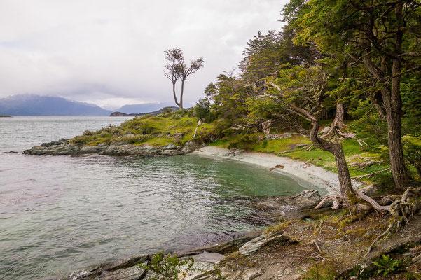 Einsame Buchten im Feuerland Nationalpark