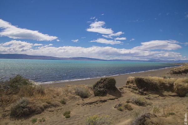 Vom Naturschutzgebiet Laguna Nimez kommt man an den wunderschönen Strand des Lago Argentino