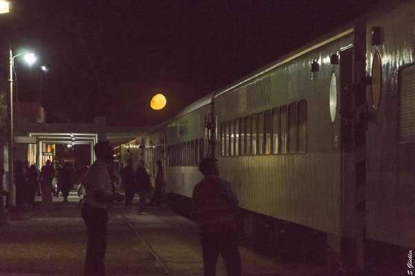 Mondaufgang in San Antonio Oeste