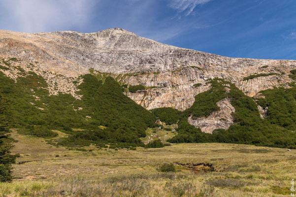 Cerro CAB, hier müssen wir hoch. Zunächst durch einen Lenga-Wald, dann über Stock und Stein.