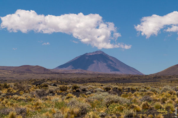 Vulkan Payún Liso