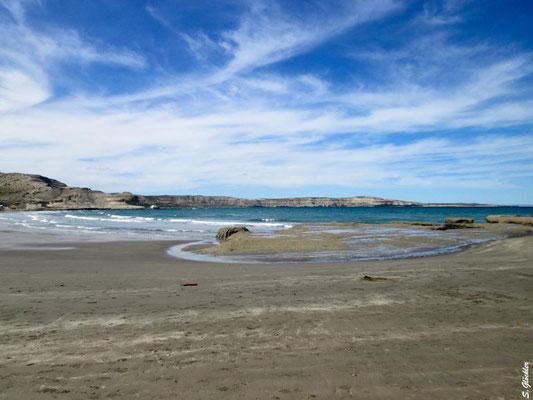 Am Strand von Puerto Pirámides