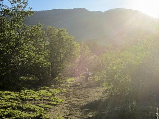 Nur noch ein paar Kilometer bis zum Zeltplatz Los Césares