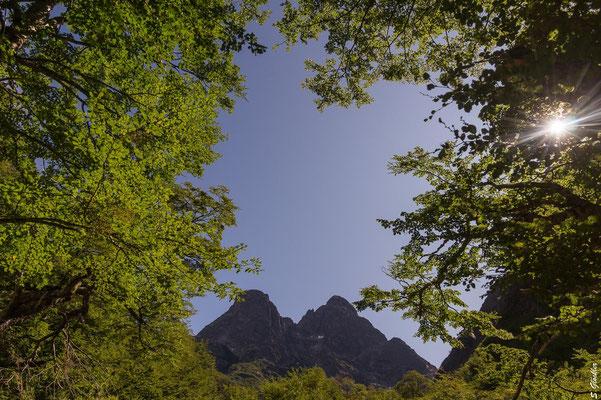 Blick auf den Cerro Negro - jetzt geht es bergauf!