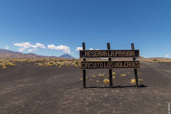 Naturreservat La Payunia: Willkommen im Land der Vulkane!