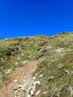 Abstieg zum Mallín de Ricardo