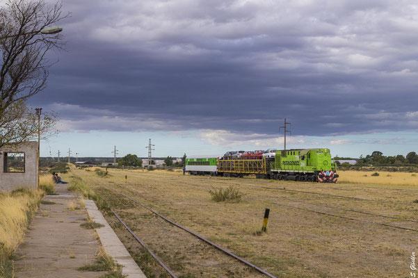 830 Kilometer mit dem Tren Patagónico von Viedma nach Bariloche