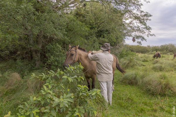 Mit dem Gaucho unterwegs durch die Esteros