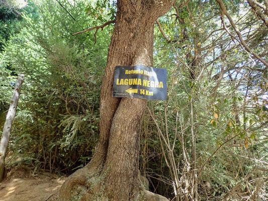 14 Km müssen von Colonia Suiza bis zum Refugio Laguna Negra zurückgelegt werden.
