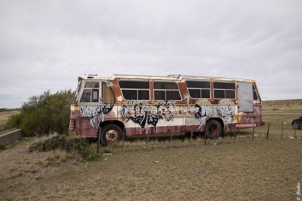 Hartgesottene können es sich in den alten Bussen gemütlich machen