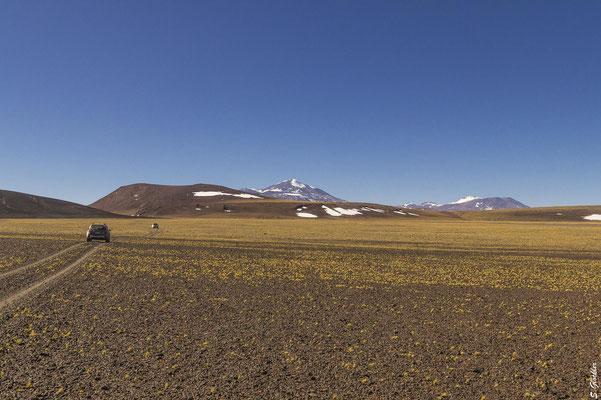 Die karge Schönheit der Puna, umgeben von majestätischen 6000ern