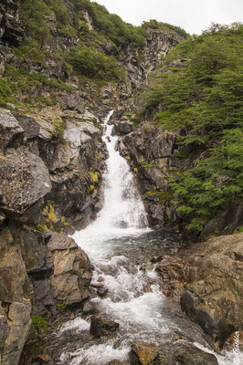 Von Bariloche zum Refugio Jakob (San Martín)