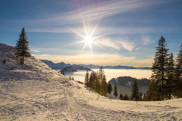 Januar 2021: über Nacht vom Winter...