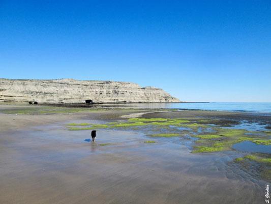 Peninsula Valdés: wunderschöne einsame Strände laden zum Spazierengehen oder Reiten ein