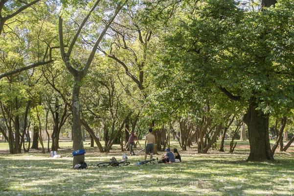 Entspannen in den Grünflächen von Palermo