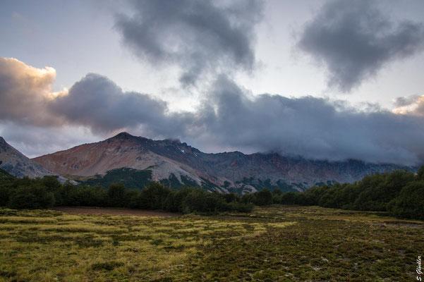 Campingzone Mallín de las Vueltas, die Lenga-Büsche bieten Schutz vor dem patagonischen Wind