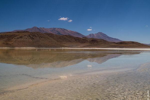 Bolivien: Lagunen auf 400 Metern Höhe