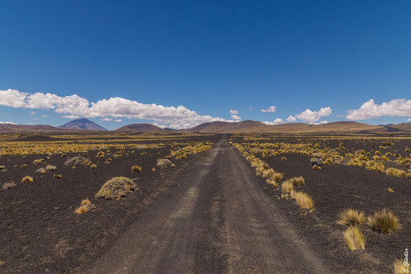 La Payunia, die schwarze Wüste