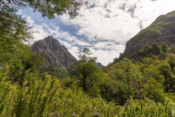 Auf dem Weg zum Refugio Laguna Negra