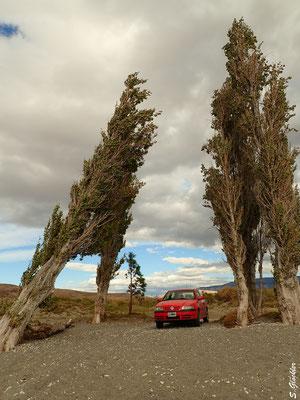 wohlverdiente Pause am Lago Posadas, Provin Santa Cruz