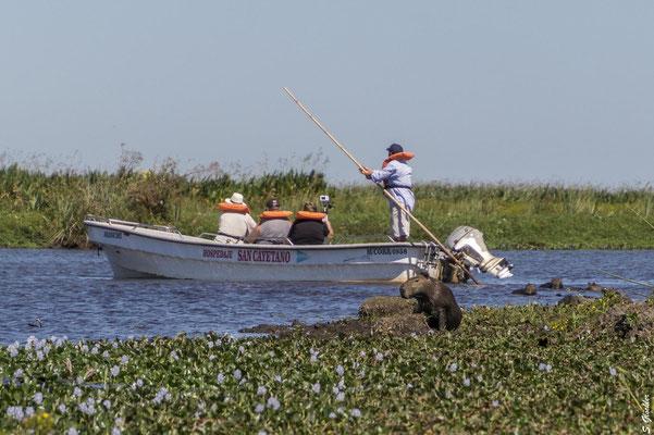 Mit dem Boot durch die Esteros del Iberá