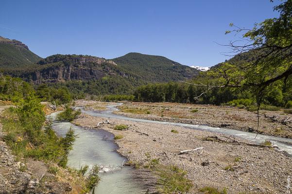 Zwischen Pampa Linda und Cerro Tronador