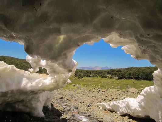 Blick auf das Mallín von einer Eishöhle